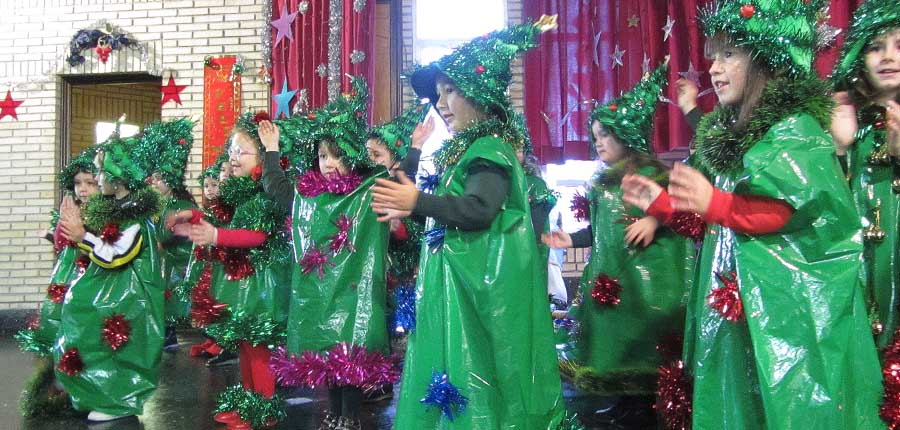Festival Navidad