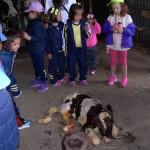 Educación Infantil visita la granja